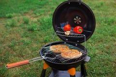 Свежее мясо и овощи на внешнем гриле Стоковая Фотография