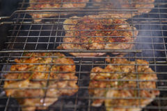 Свежее мясо на гриле outdoors Стоковое Изображение RF