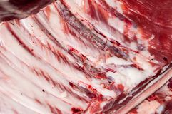 Свежее мясо свинины Стоковая Фотография
