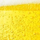 свежее немецкое пиво - напитки, коктейли и введенная в моду торжеством концепция стоковые изображения rf