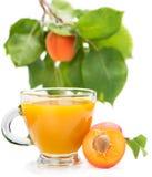 Свежее питье абрикоса Стоковое Изображение RF