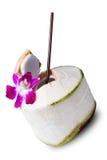 Свежее питье воды кокоса Стоковое фото RF