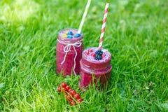 Свежее питье smoothie с различными ягодами как здоровый завтрак Стоковое Изображение RF
