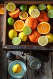 Свежее смешивание цитрусовых фруктов стоковые фото