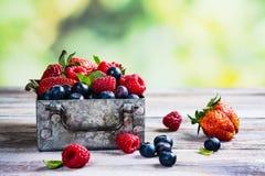 Свежее смешивание ягод в коробке металла на белой каменной предпосылке Стоковое Изображение RF