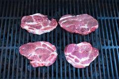 Свежее сочное мясо на открытом барбекю стоковая фотография