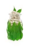 свежее стеклянное травяное дополнение пилек листьев Стоковые Изображения