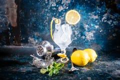 Свежее стекло коктеиля готовое для напитка Бармен подготавливая коктеиль на баре, пабе или ресторане Стоковая Фотография