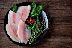 Свежее сырцовое филе рыб тилапии с перцем тимиана, розмаринового масла, базилика и chili Стоковая Фотография