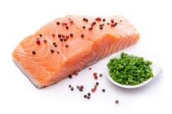 Свежее сырцовое salmon филе с травами и специей Стоковая Фотография