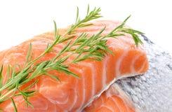Свежее сырцовое salmon филе с травами Стоковая Фотография