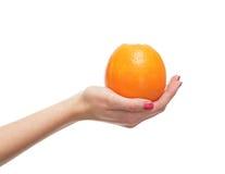 Свежее яблоко, котор держат в красивейших женских руках на белизне Стоковые Изображения RF