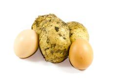 Свежее яичко Брайна с картошками Стоковое фото RF