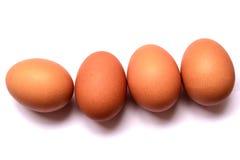Свежее яичко на белой предпосылке isoleted яичко Стоковое Изображение