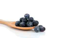 Свежее Bluberries Стоковые Изображения