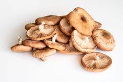 Свежее ki ki грибов на белом кухонном столе Стоковая Фотография