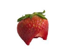 свежее strawberrry Стоковая Фотография