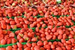 Свежее Strawberrys для сбывания на рынке хуторянин Стоковое Изображение RF