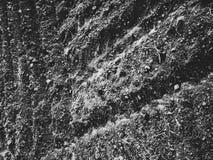 Свеже вспаханная земля Стоковые Фотографии RF