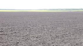 Свеже вспаханные черные маневры земли сток-видео