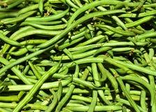 Свеже выбранные длинние зеленые фасоли Стоковые Изображения