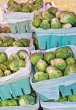 Свеже выбранный brussel - ростки на тропическом рынке фермеров Стоковая Фотография