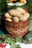 свеже другие овощи картошек Стоковое фото RF