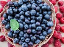 Свеже еда противостарителя плодоовощ голубики поленики Стоковые Изображения