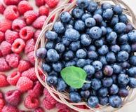 Свеже еда противостарителя плодоовощ голубики поленики Стоковая Фотография
