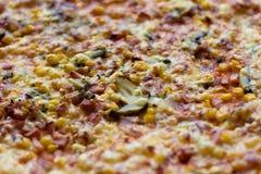 Свеже зажаренная в духовке пицца Стоковые Фото