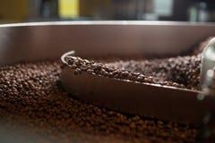 Свеже зажаренные в духовке кофейные зерна - крупный план Стоковое Изображение