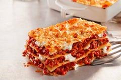 Свеже испеченная итальянская лазанья говядины и моццареллы Стоковое фото RF