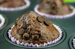 Свеже испеченные булочки с падениями шоколада Стоковые Фотографии RF