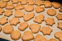 Свеже испеченные печенья пряника шоколада на листе выпечки на листе выпечки Стоковые Изображения