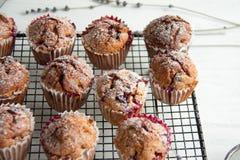 Свеже испеченные пирожные с крыжовником Стоковое Фото
