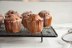 Свеже испеченные пирожные с крыжовником Стоковая Фотография