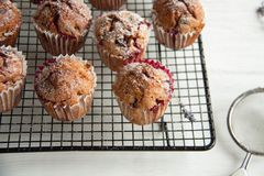 Свеже испеченные пирожные с крыжовником Стоковое фото RF