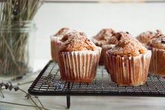 Свеже испеченные пирожные с крыжовником Стоковые Изображения