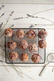 Свеже испеченные пирожные с крыжовником Стоковое Изображение