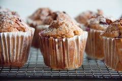 Свеже испеченные пирожные с крыжовником Стоковые Фотографии RF