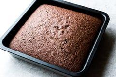 Свеже испеченный торт губки шоколада в квадратной прессформе Стоковые Изображения RF