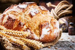 Свеже испеченный хлебец хлеба Стоковое фото RF