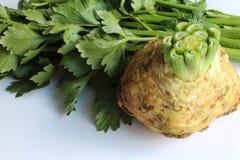 Свеже отрежьте celeriac и стержни Стоковое Изображение RF