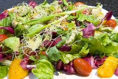 свеже подготовленные салаты Стоковые Изображения