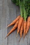 Свеже сжатые моркови с зелеными листьями Стоковое Изображение