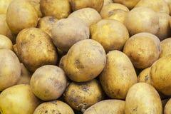свеже сжатые органические картошки стоковые фотографии rf