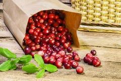 Свеже сжатые сырцовые органические красные клюквы на деревянном столе Стоковое фото RF