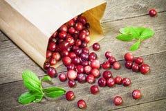 Свеже сжатые сырцовые органические красные клюквы Стоковые Изображения RF