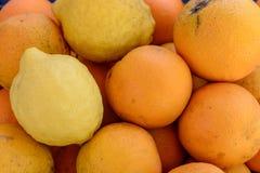 Свеже сжиманный апельсиновый сок в стеклянной чашке, рядом с таблицей лежит апельсины и лимоны Стоковое фото RF