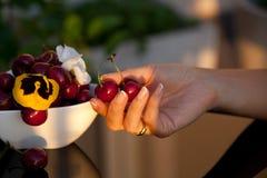 Свеже сладостные вишни Стоковое Изображение